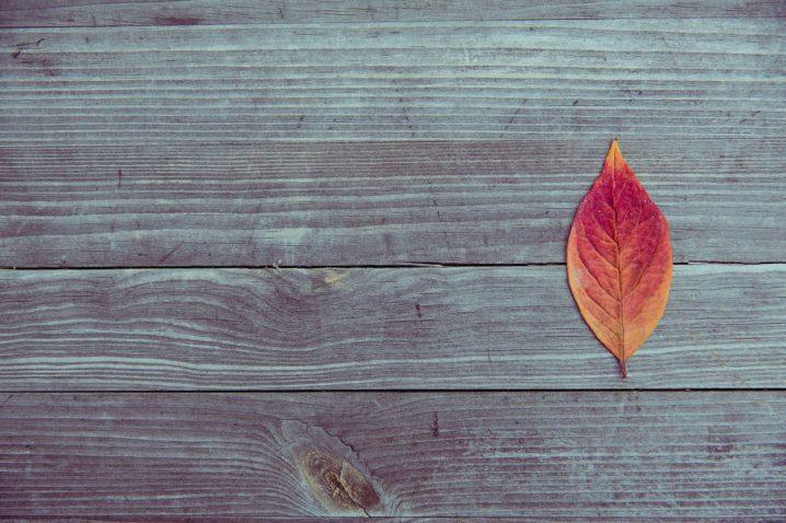 autumn color coordinate